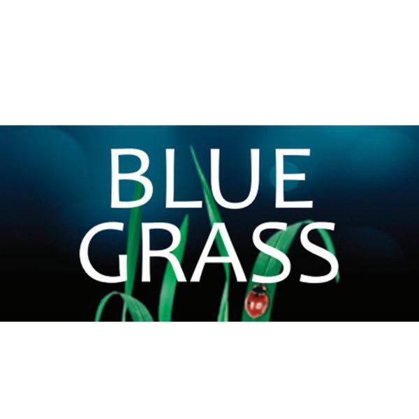 Odorizant Blue Grass Vision
