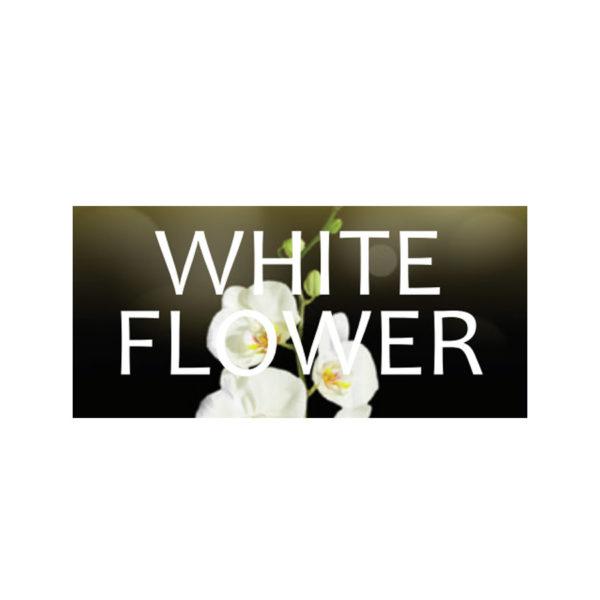 Odorizant White Flower Vision